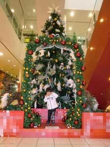 20111110クリスマスツリー225×300CIMG6614.jpg